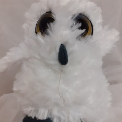 2 for £20 SCREECH OWLS