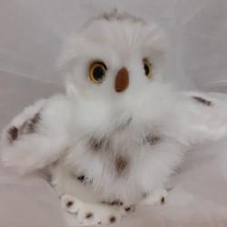 2 for £20 SNOWY OWL